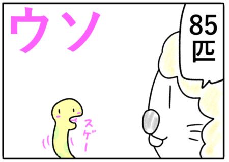 lie(ウソ、虚偽)