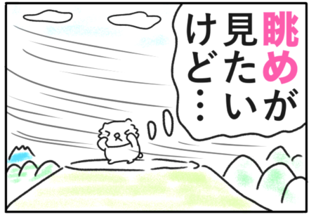 view(眺め)