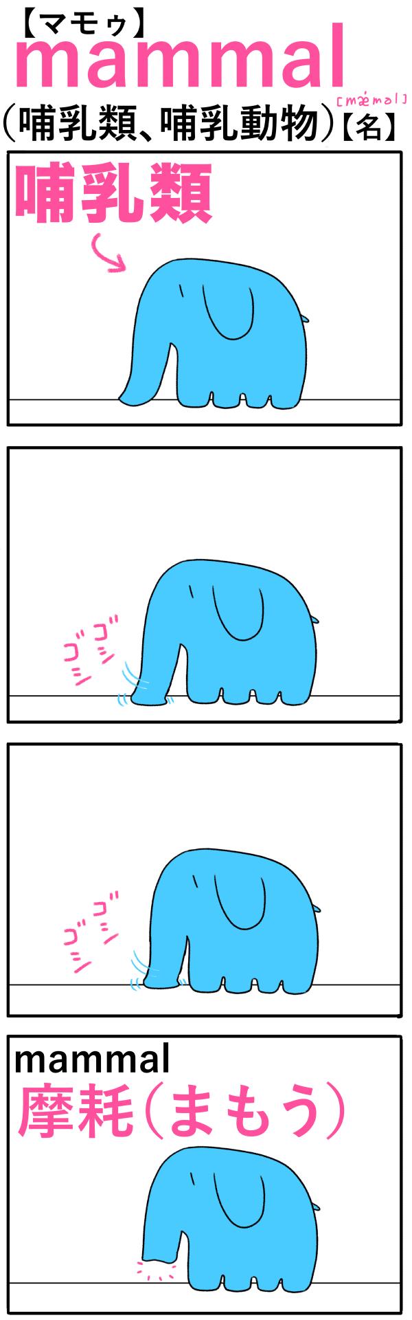 mammal(哺乳類)の語呂合わせ英単語