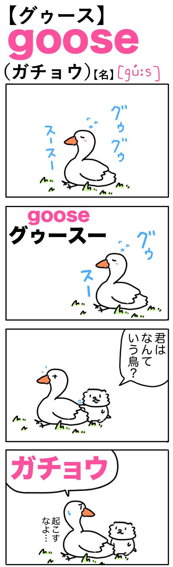 goose(ガチョウ)の語呂合わせ英単語