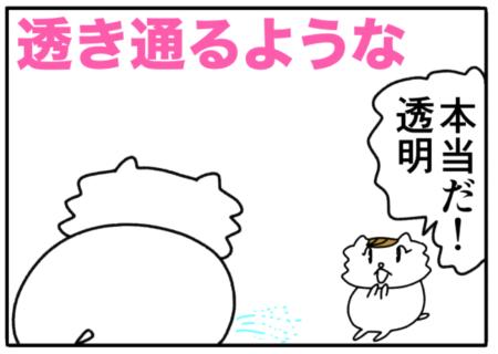 sheer(透き通るような)