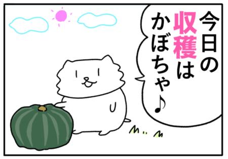 crop(収穫)