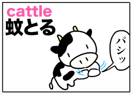 cattle(牛)の覚え方