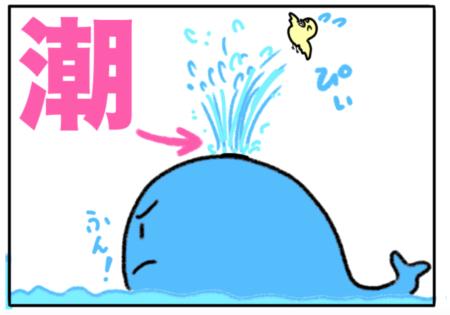 tide(潮)