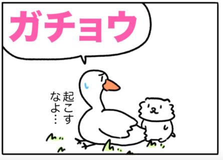 goose(ガチョウ)