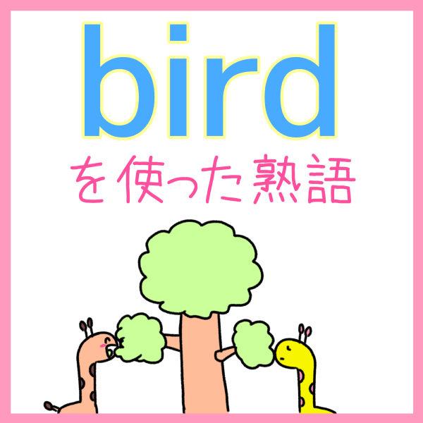 birdを使った英熟語の覚え方