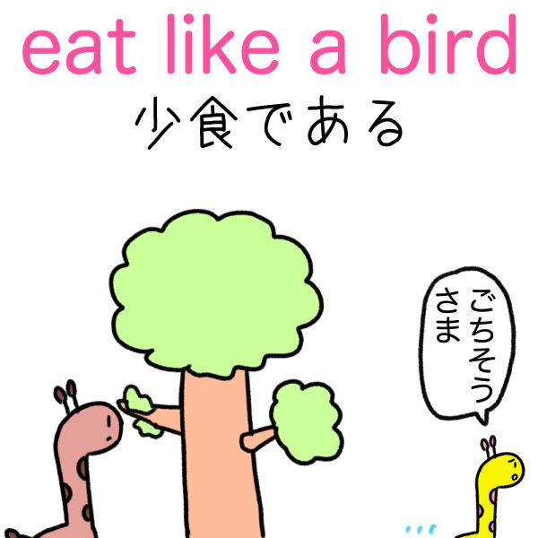 eat like a bird 意味 少食である