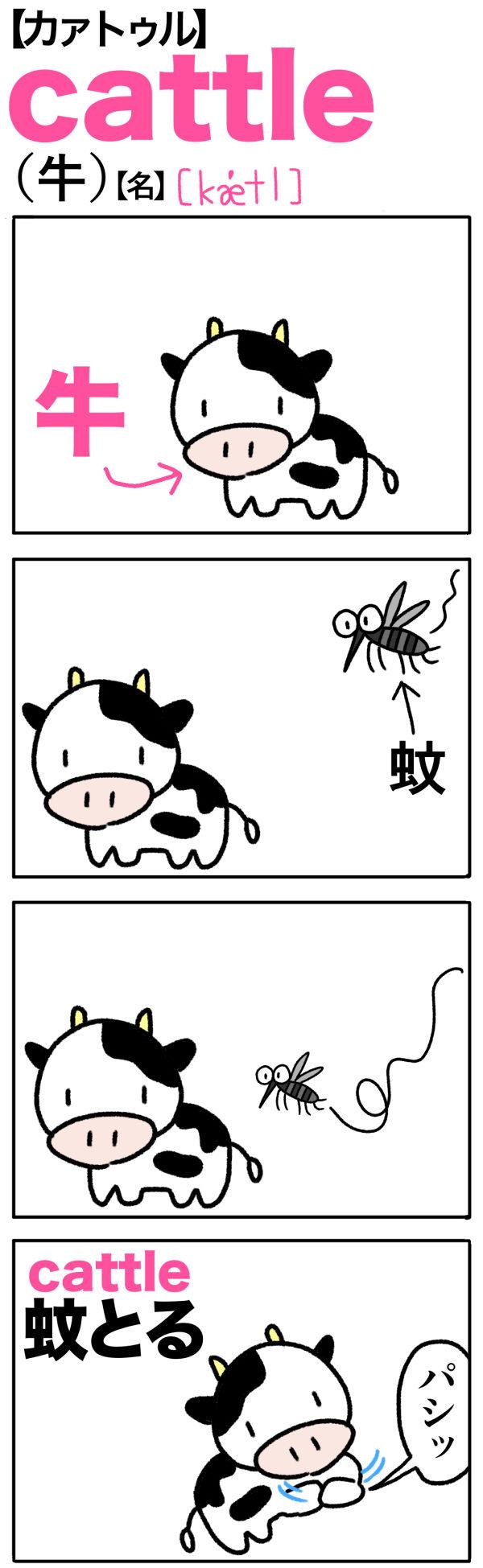 cattle(牛)の語呂合わせ英単語