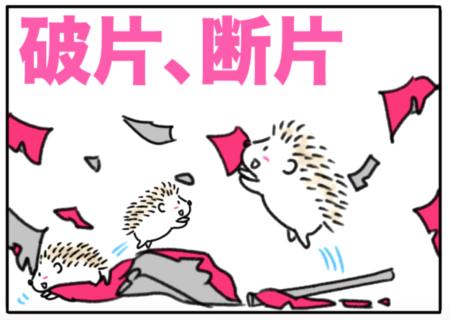 fragment(破片、断片)