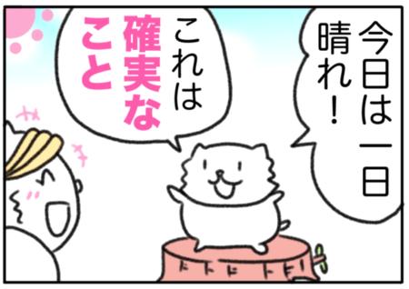 cert(確実なこと)
