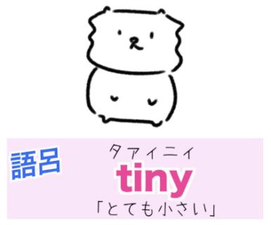 tiny(とても小さい)の覚え方