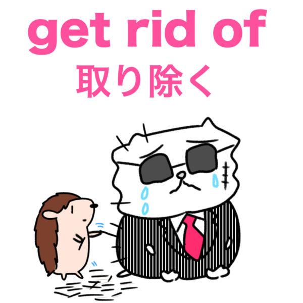 get rid of (取り除く)の使い方