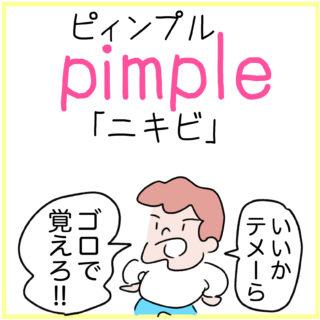pimple(ニキビ)の覚え方