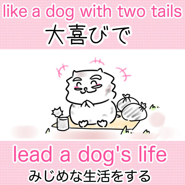like a dog with two tails 大喜びで